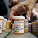 Purdue Pharma prepares 'free-fall' bankruptcy as settlement talks stall