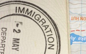 immigration and crime